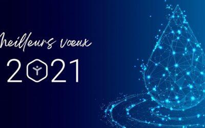 Toute l'équipe d'InovaYa vous souhaite une très belle année 2021 ! 😊
